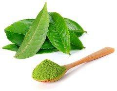 matcha-tea-leaves-and-powder