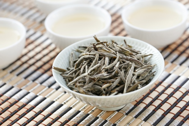 white tip silver needle tea